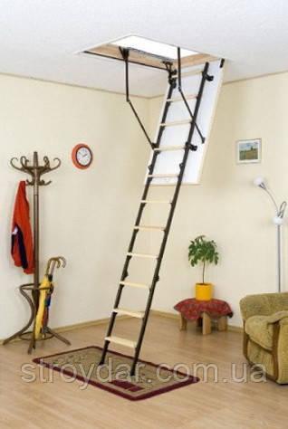 Горищні сходи Oman Mini Termo 80х70 мм H265