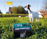 Электропастух для свиней, коз, овец