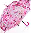 Яркий женский зонт-трость, полуавтомат ZEST (ЗЕСТ) Z21625-17, фото 2