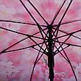 Яркий женский зонт-трость, полуавтомат ZEST (ЗЕСТ) Z21625-17, фото 5