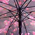 Лёгкий женский зонт-трость, полуавтомат ZEST (ЗЕСТ) Z21625-22, фото 5