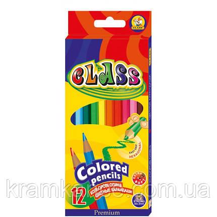 Карандаши цветные 12цв. CLASS Premium 1612, фото 2