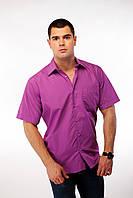 Рубашка мужская сиреневая