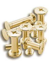 Болты для переплета мет. цвет-золото  10 мм 100 шт./уп.