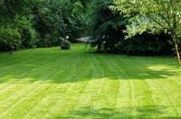 Три шага к красивому газону: удобряем, «расчёсываем» и убираем «залысины»!!!