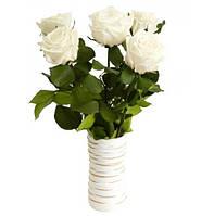 Букет долгосвежих роз Белый Бриллиант