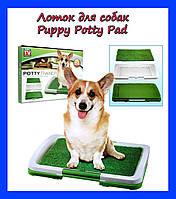 Удобства для вашего четвероного члена семьи. Лоток для собак Puppy Potty Pad