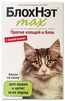 БлохНэт max капли на холку против клещей и блох для кошек и котят всех пород, 1 мл, Астрафарм