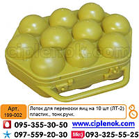 Контейнер (лоток) для яиц на 10 шт (ЛТ-2)