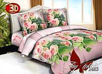 Комплект постельного белья недорого,  HT2483, пододеяльник (2 шт) 145x215