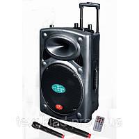 Акустика на акумуляторе DP 297F с двумя микрофонами