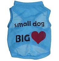 Одежда для собак маленьких пород Маленькая собачка с большим сердцем