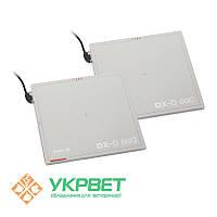 Цифровой детектор с функцией AED DX-D 60