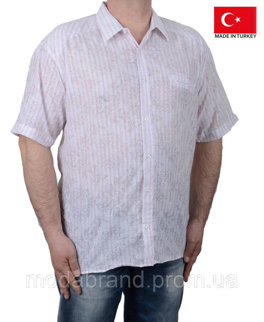 56a3791a80fbe36 Легкая летняя мужская рубашка короткий рукав.Большого размера. -