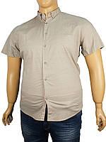Рубашка мужская Desibel 5058 B #4.
