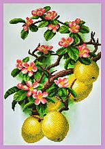 Набір для вишивання бісером Квітуча айва