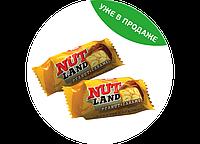 "Конфеты ""Nut Land"" (Нат ленд) 1,8кг. ТМ Клим"