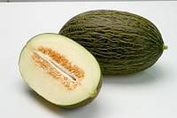 РЕЙМИЛ F1 - насіння дині тип Пиел де Сапо, 100 насінин, Rijk Zwaan, фото 1