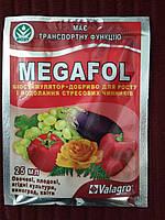 Біостим МЕГАФОЛ 25мл (зростання, антистрес)
