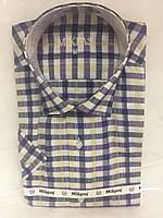 Рубашка короткий рукав Mikpas