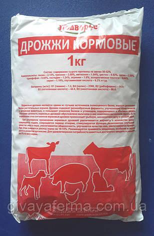 Дрожжи кормовые Протеин 39%, 32 кг, протеиновая добавка в корм, фото 2