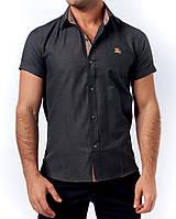 Мужская рубашка Burberry