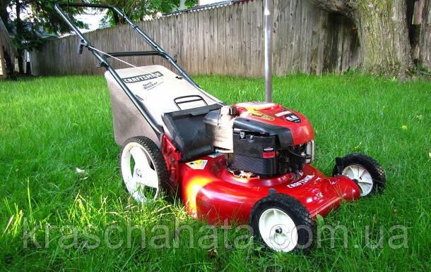 Как посеять газон: пошаговая инструкция