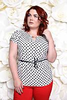 Блузка большого размера 310 горох, нарядная блузка в горошек большого размера