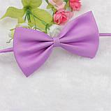 Галстук бабочка для собак и кошек фиолетовый, фото 2