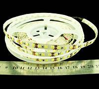 Світлодіодна стрічка 3528-120-IP33-CWd-8-12 RE08C0BA ,холодно-білий, 12В, 8 Вт