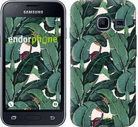 "Чехол на Samsung Galaxy J1 Mini J105H Банановые листья ""3078c-258"""