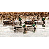 Чучела кряквы Avian-X Mallard Floater Open Water Decoys - 6 Pack