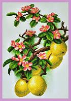 Набор для вышивания бисером Цветущая айва