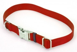 Coastal Titan Buckle ошейник для собак, 2смХ30-45см, красный