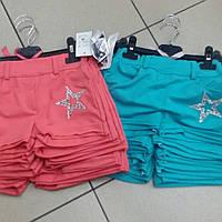 Оптом детские трикотажные цветные  шорты для девочек Angelina
