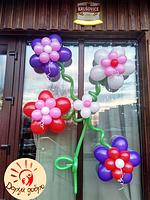 №50 Композиция из воздушных шаров Днепр