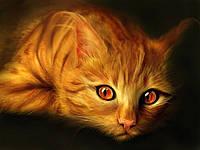 Вакцинация кошек. Что такое ревакцинация и зачем она нужна?