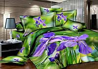 Комплект двухспальный, Ирисы (зеленый фон)