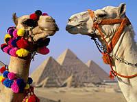 Горящие туры в Египет из Харькова