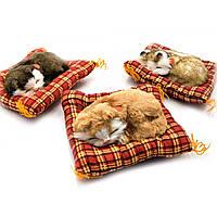 Котенок на коврике мяукает 14х11х3 см