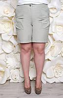 Летние шорты Мишель, размеры 50-60
