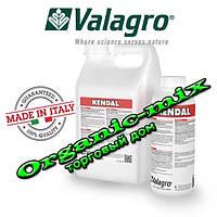 Kendal / Кендал 1 литр Valagro Биостимулятор роста (усиление стрессоустойчивости растений)