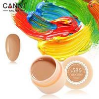 Гель-краска Canni №585 телесная карамельная