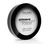 Матирующая рисовая пудра Ingrid Cosmetics Professional Translucent Powder