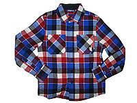 Рубашка для мальчика, Pepperts, размеры 122,128,134,146,152, арт. Л-016
