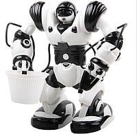 Робот на радиоуправлении / игрушечный, на пульте управления TT313/28091