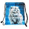 Женский рюкзак мешок с котиком для девушек.