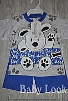 Футболка с рисунком собачки и шортики, для мальчика