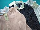 Блуза детская школьная Maria Размеры 134, 146 Пудра, фото 5