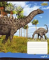 """Тетради школьные 24 листа клетка """"Динозавры"""""""